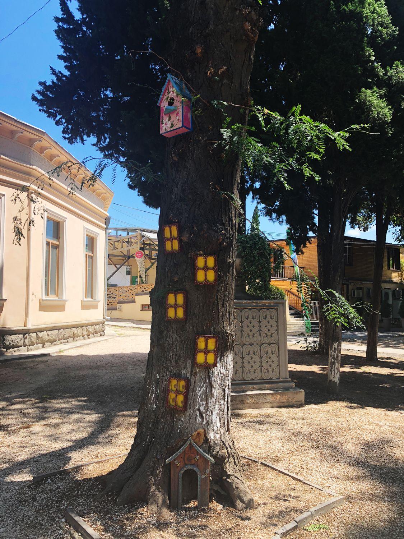 Тбилиси - дерево с окнами